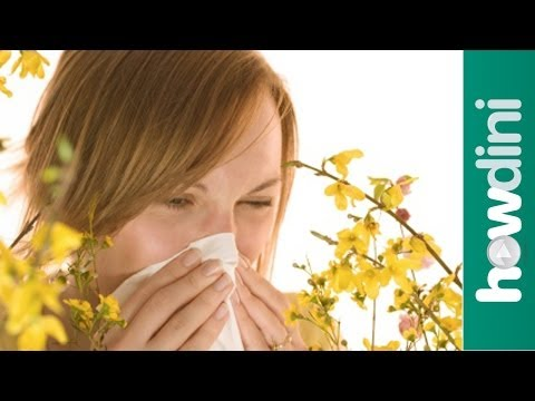 Treating allergies: How to control your allergies