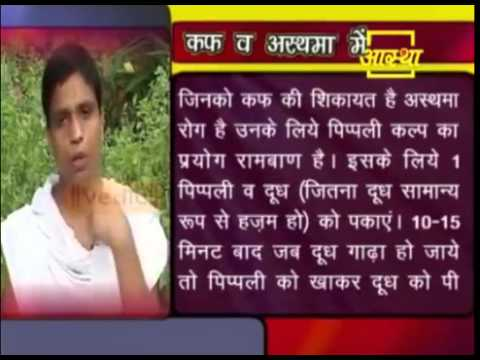 Ayurvedic Treatment Of Cough & Asthma by Long pepper (Pippali)-Acharya Balkrishna