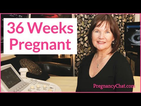 """""""36 WEEKS PREGNANT"""" by PregnancyChat.com @PregChat"""