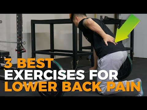 3 BEST EXERCISES FOR LOWER BACK PAIN (PAIN RELIEF)