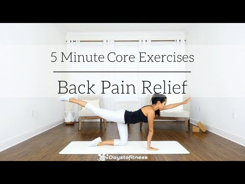 5 Minute Core Exercises for Back Pain Relief