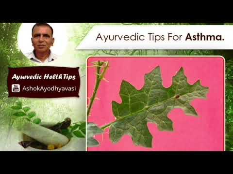 Ayurvedic tip for ASTHMA ( दमा, श्वास, अस्थमा की अचूक औषधि कण्टकारी )
