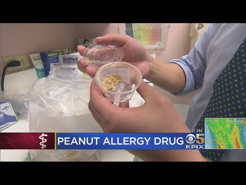"""New Drug Called """"A Breakthrough"""" For Kids With Peanut Allergies"""