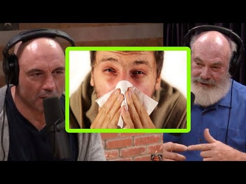 Can Psychedelics Cure Your Allergies? – Joe Rogan and Andrew Weil