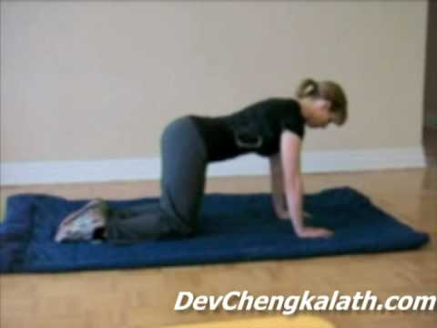 Best Exercises to Reduce Low Back Pain: The Bird Dog (and Variations)
