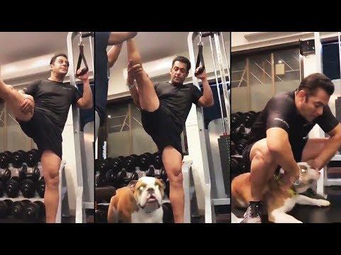 Salman Khan Shares Another Gym Workout Video | BHARAT