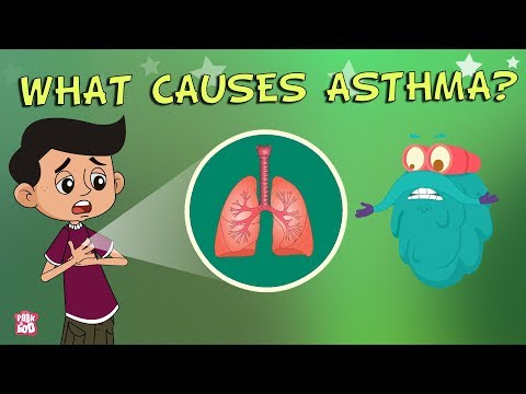 What Causes Asthma? | The Dr. Binocs Show | Best Learning Videos For Kids | Peekaboo Kidz