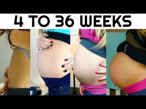 Pregnancy Week By Week || Watch My Pregnant Belly Progression!