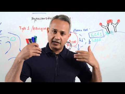 Type 1 hypersensitivity reactions – allergies (urdu/hindi) Immunology lecture 13