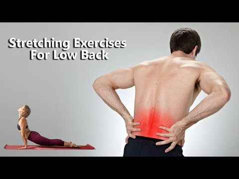 6 Stretching Exercises To Relieve Lower Back Pain