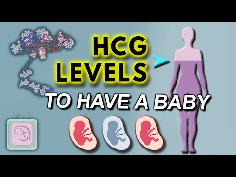 hCG levels in early pregnancy –  Does hCG have to double in 2 days?