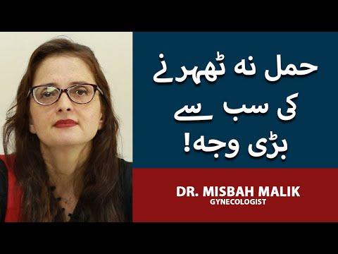 Hamla Hone Ka Tarika| How To Get Pregnant In Urdu/Hindi| How To Conceive |Pregnancy Tips |Dr Misbah